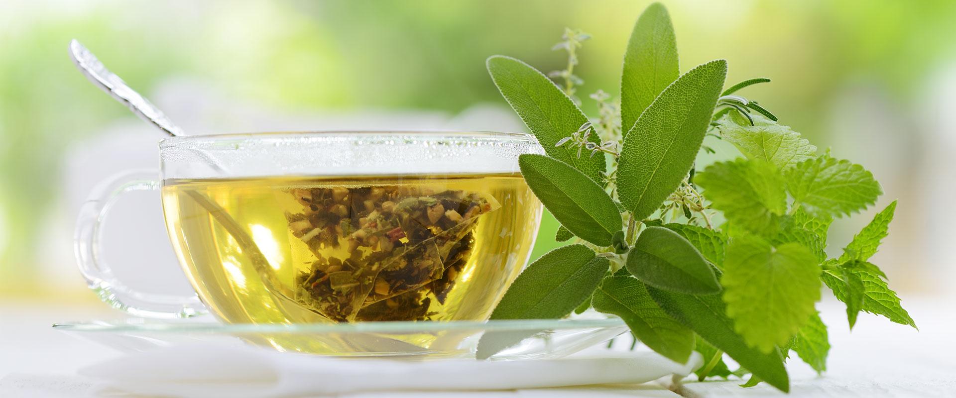 természetes teák a fogyáshoz reishi gomba fogyni