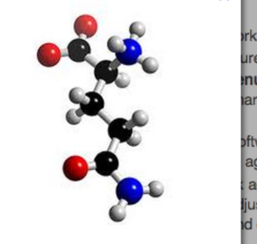 A glutamin a leggyakoribb aminosav az izmokban – de mire is jó pontosan?