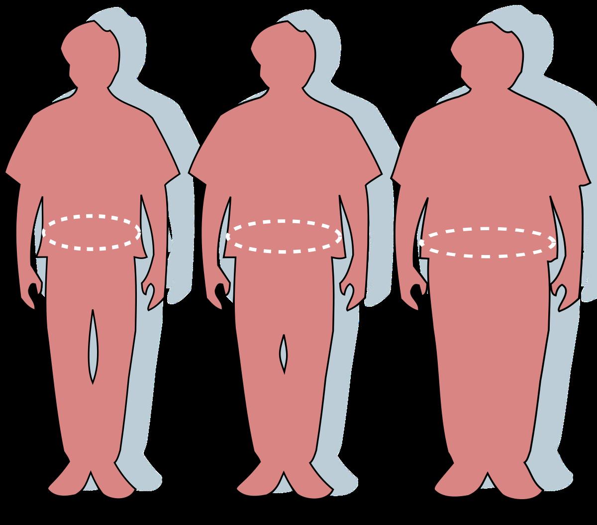 hogyan fogy a túlsúlyos ember marco polo fogyás