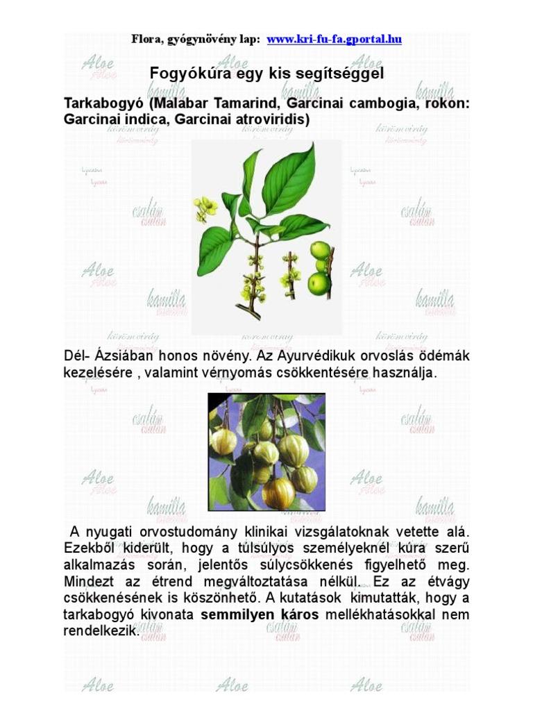 arizona fogyókúra