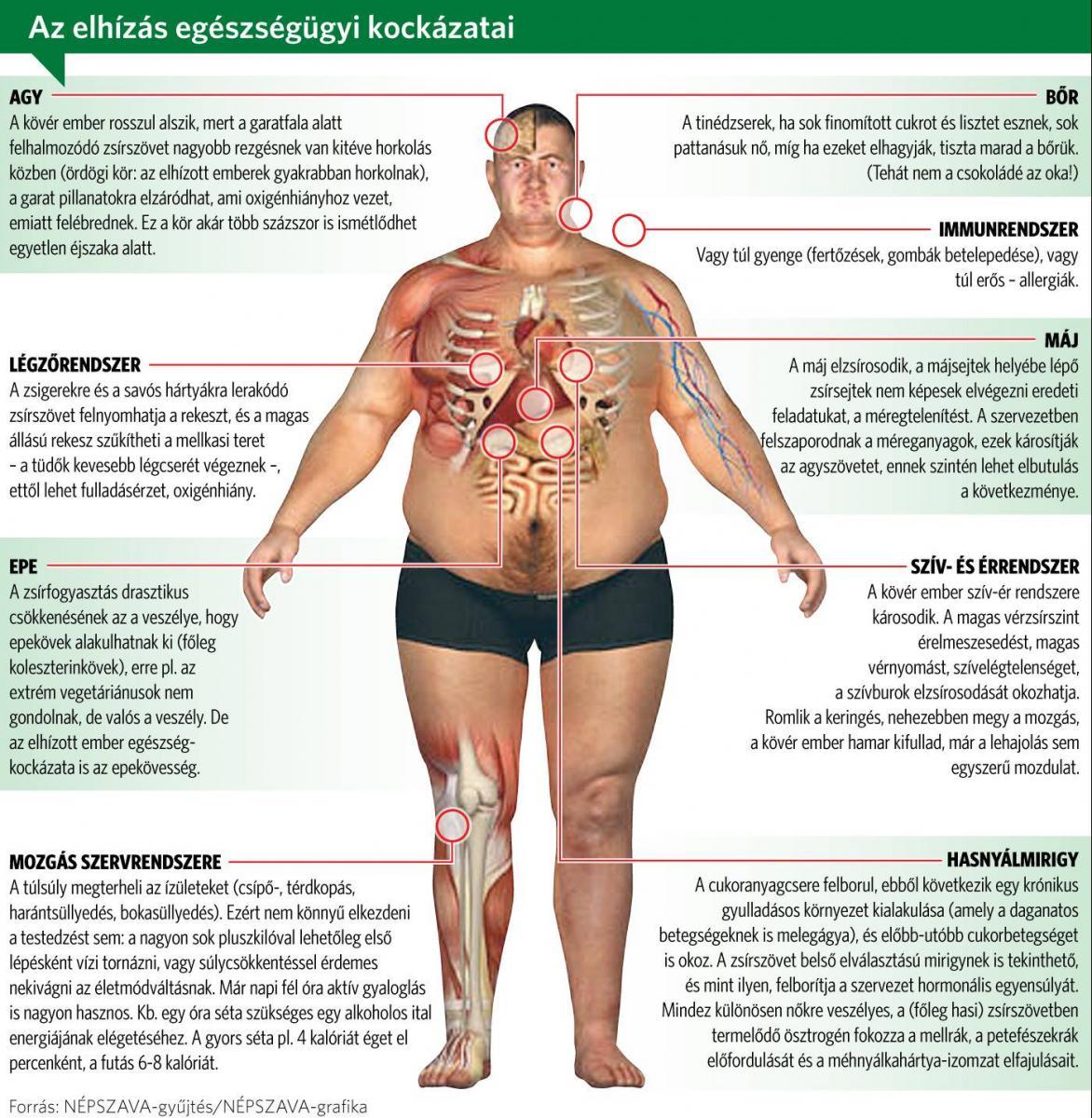 acv zsírvesztés esetén fogyni vagy zsír