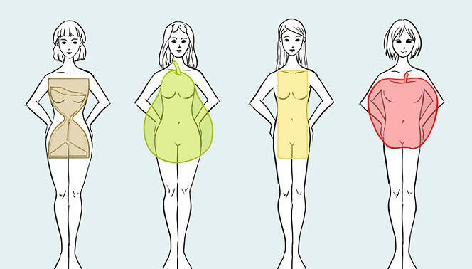 a legjobb zsírvesztés az endomorf számára