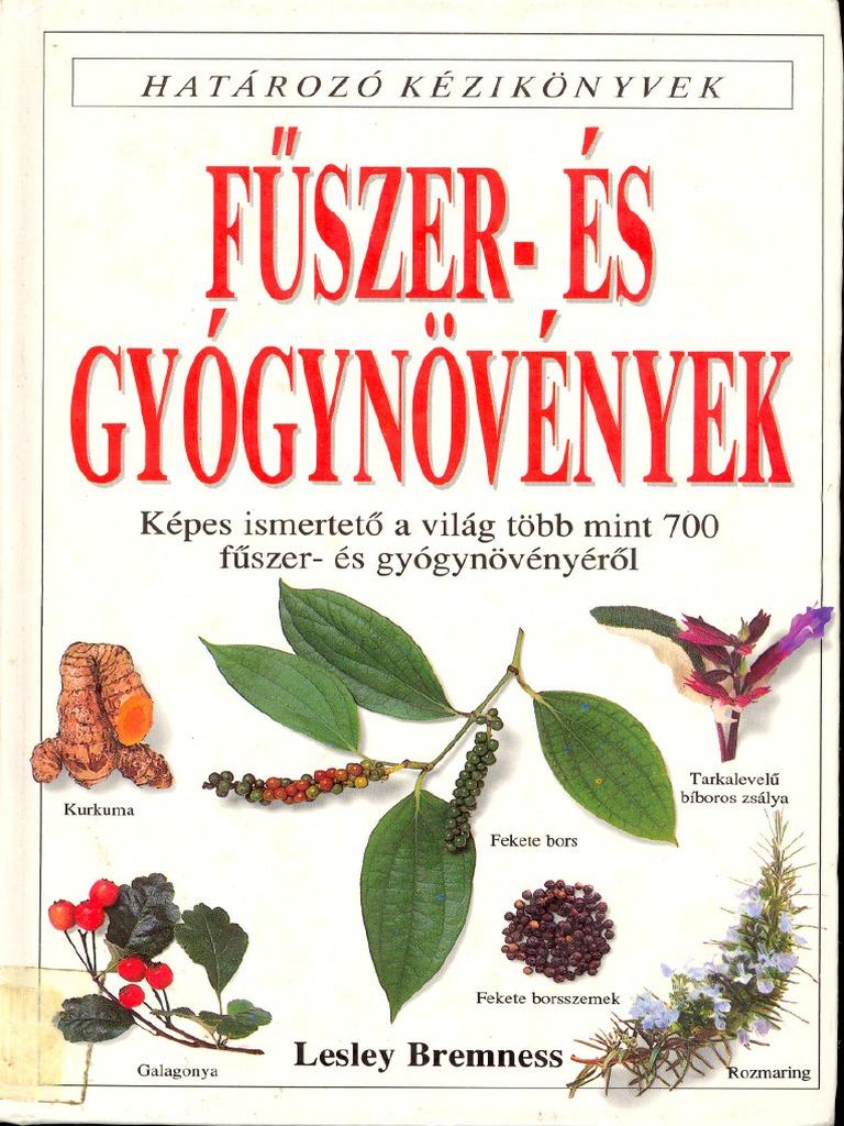 cara minum obat test karcsú gyógynövény