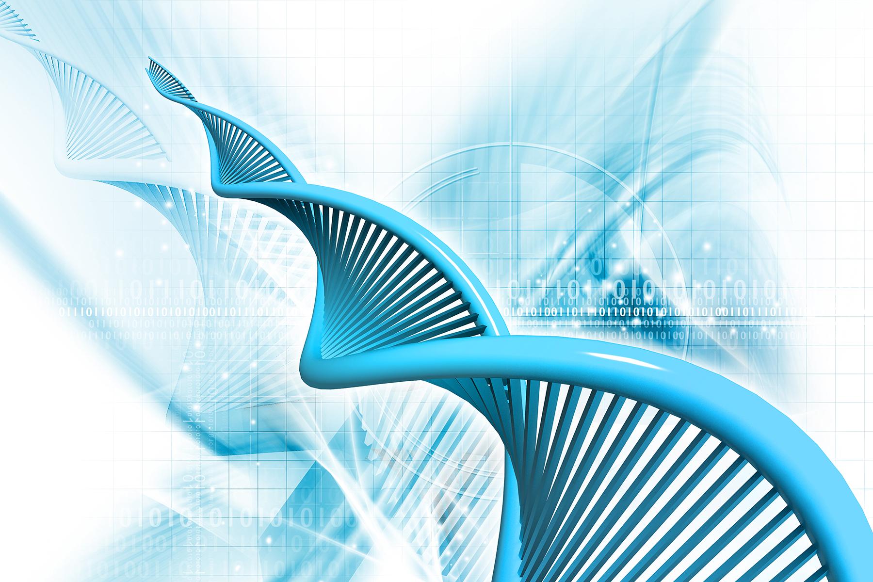 fogyni a DNS alapján