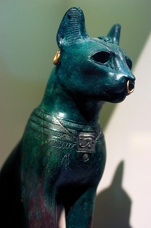 egyiptomi hölgy fogyás